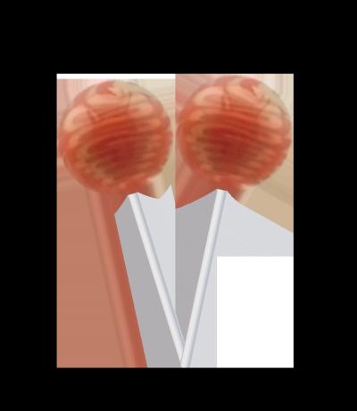 Original Gourmet Lollipop (31g) – Caramel Apple -
